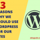 13 REASONS WHY WE SHOULD USE WORDPRESS FOR OUR SITES